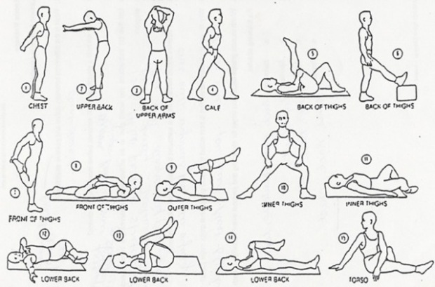 stretching-exercises